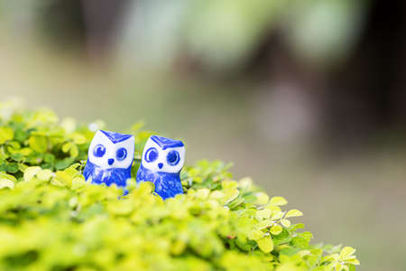 Two blue and white ceramic owls sitting in green garden