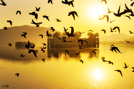 saturated color: Vibrant sunrise with the flying birds in silhouettes at Jai Mahal India.