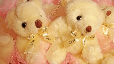 valentine s day teddy bear: Two teddy bears with bows of a bouquet of soft toys
