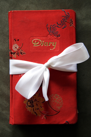 Embroidered red cover of a well worn diary, secured shut with white ribbon tied in a bow. Stock Photo