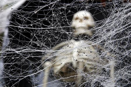 Ein verschlungenen nass dekorative Spinnennetz mit einem menschlichen Skelett in den Hintergrund.