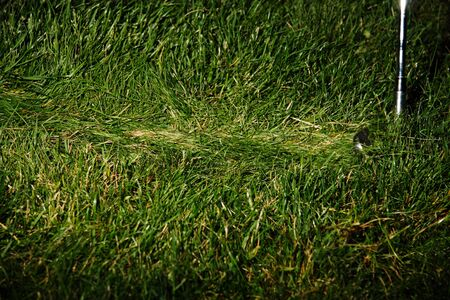 Frozen action of golf club sweeping grass after striking golf ball. Archivio Fotografico