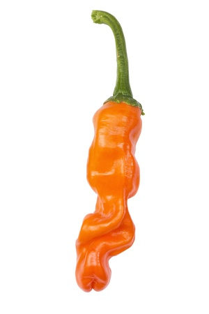 peters: Peter s pepper isolated on white with clipping path Stock Photo