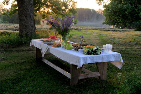 Midsummer food table.Table filled with drinks and food outside in the garden under the trees. on the table a glass vase with blue meadow flowers. Latvian LIGO festive Banque d'images