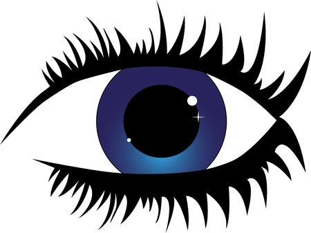 Blue female eye with eyelashes   Vector