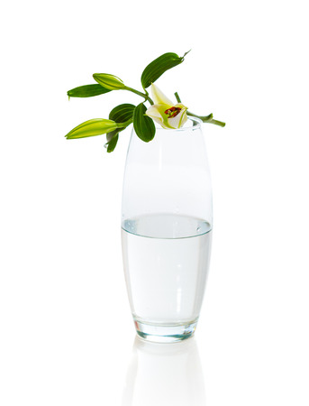 Bouquet of white lilies in glass vase isolated on white background