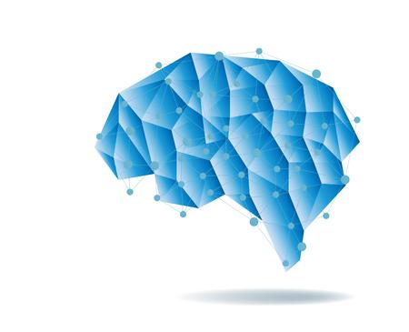 Human brain anatomy structure vector illustration. Illustration
