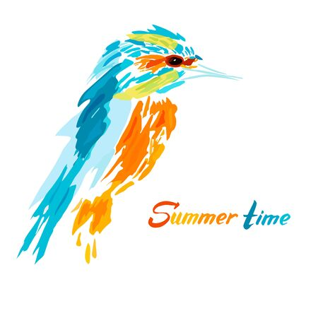 Vector Illustration of a kingfisher. Tropical color, summer time