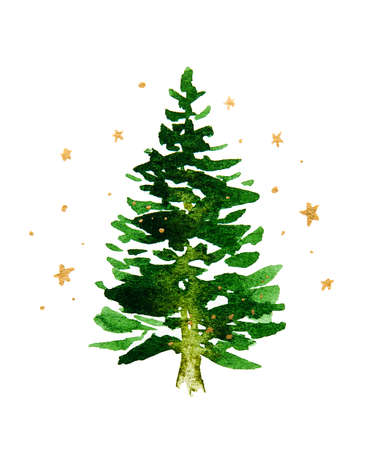 Green Christmas tree on a white background with gold stars. Watercolor drawing