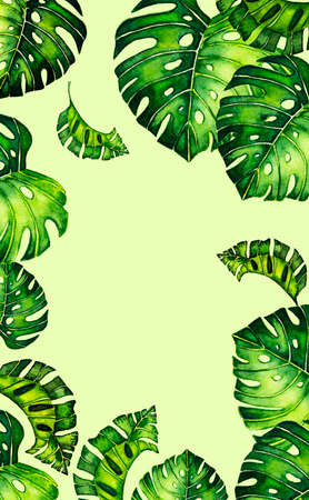 Seamless pattern of leaves monstera. Tropical leaves of palm tree. background.