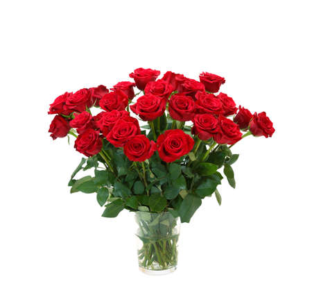 bouquet of blossoming dark red roses in vase isolated on white background Stockfoto