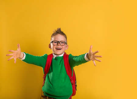 portrait of a happy little boy opening his arms like a hug. Open hands to hug. Back to school