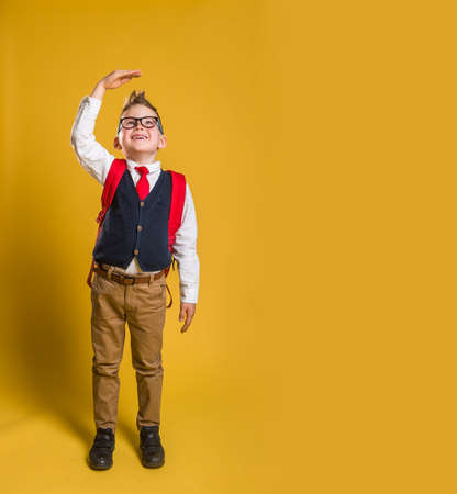 Full length body size view photo of kid impressed raise arm measurement unbelievable unexpected news open mouth anxious trendy fashionable clothing isolated on pastel background. Back to school
