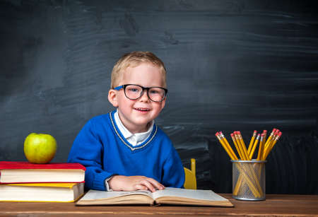 Portrait of smart kid at workplace with books and pencils on desk Reklamní fotografie