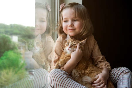 Cute little girl with red cat on window background. Little kid playing with cat at home.