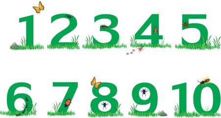green numbers lays on green grass with insects all over Vector