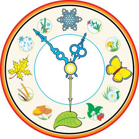 clock four season Vector
