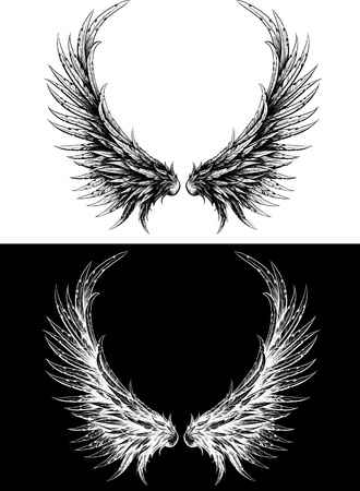 Silhouette of wings made like ink drawing. Black on white and white on a black background Vector