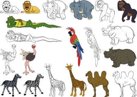 Funny African Animal Collection. Color and black and white. Stock Illustratie