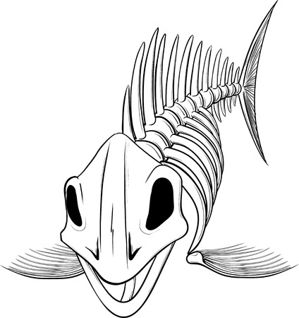 skeleton of fish: Detailed silhouette skeleton fish head to the viewer isolated on white background