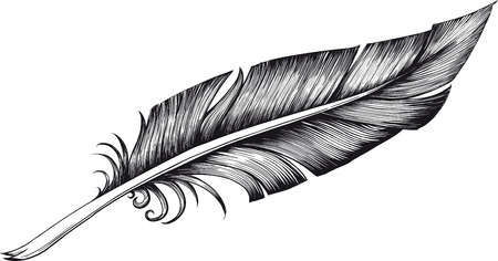 feathers: quill pen
