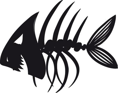 fish tail: Sketch of fish skeleton black