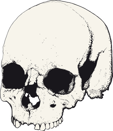 deaths: skull drawn as tattoo in profile isolated on white Illustration