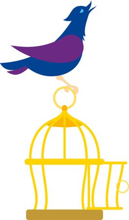 jail bird: bird on the cage