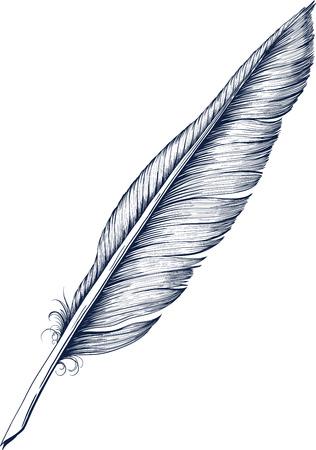 pluma de escribir antigua: Pluma