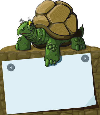 education background: Intelligent Turtle teaches showing paw on sheet with space for text Illustration