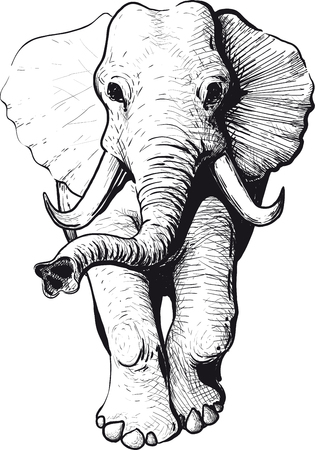 black and white image drawing: Wandering elephant with raised trunk type of head