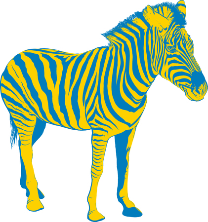 yellow fleece: Yellow Blue Zebra in profile on white background Illustration