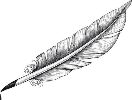 Vintage quill Illustration