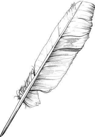 klassieke vintage ganzenveer die wordt gebruikt voor schrijven en tekenen met inkt