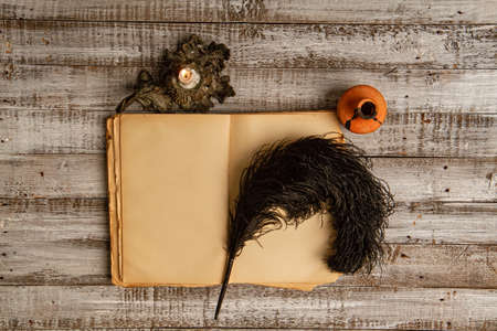 Blank the old diary and accessories for writing ink and feather pen