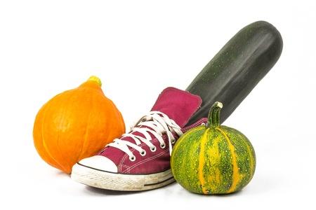 free plates: pumpkin and zucchini 4