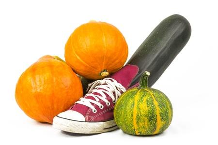 free plates: pumpkin and zucchini 2 Stock Photo