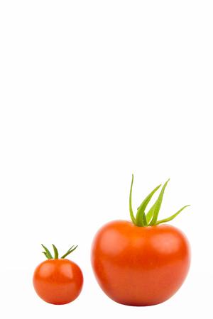 largely: Eine grosse und eine kleine Tomate, Nahaufnahme, freigestellt