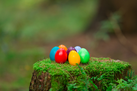 Coloured easter eggs on a stump photo
