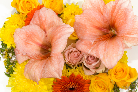 Bloosoms of rose, gerbera, chrysanthemum, amaryllis photo