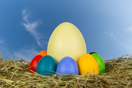 Coloured easter eggs in hay photo