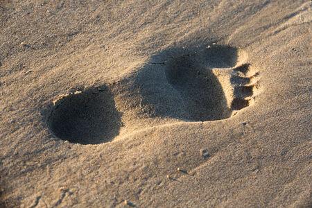 A single footprint in the sand on the beach photo