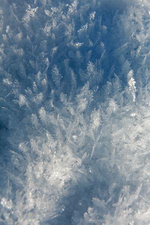 hugh: Macro of hugh ice crystals
