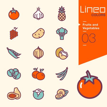 food hygiene: Lineo Colors - Fruits and Vegetables icons