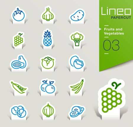 food hygiene: Lineo Papercut - Fruits and Vegetables icons outline