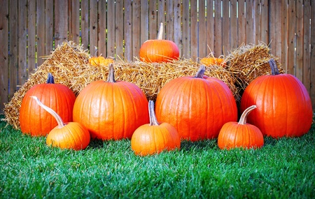 Image of a Halloween themed display of pumpkins and hay Stock Photo
