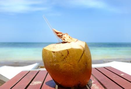 Coconut Drink photo
