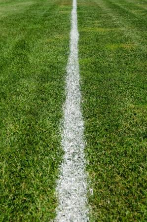 football pitch: Chalk Boundary