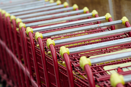 Many Grocery Carts photo