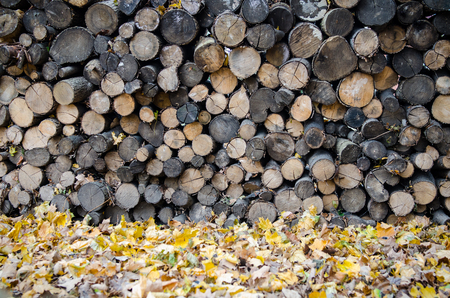 cold storage: Chopped Wood
